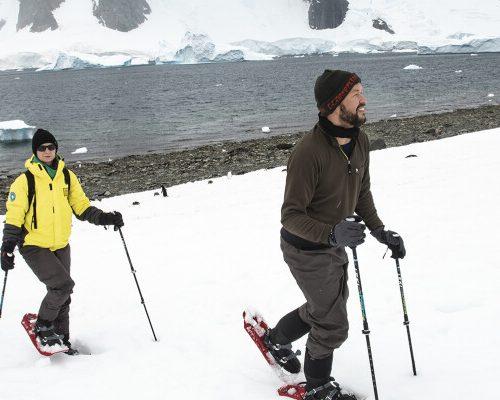Antarctica_DancoIsland_DancoIsland_LHH_20180118_0418_AE