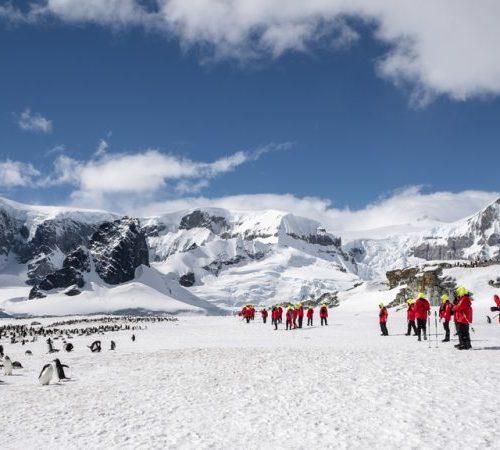 Cuverville Island – Antarctica - Hurtigruten
